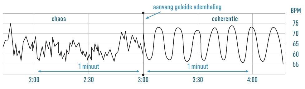 Hartcoherentie Grafiek - Slow Kortrijk